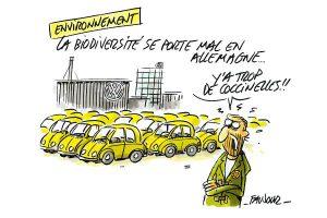 L'oeil de Faujour : Volkswagen, Das fraude